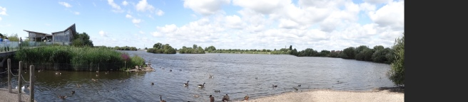 panoramic view of the rest of the reserve