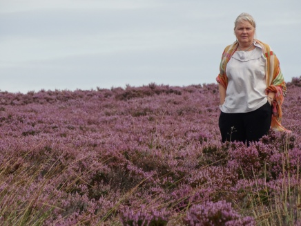 Heather across the hills