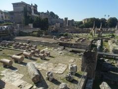 View from Mamertino across the Forum