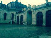 horse courtyard#2