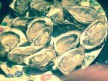 Xmas oysters