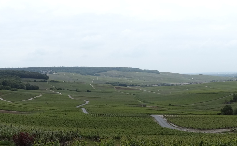 The Retirees go Abroad – Epernay andHautvilliers