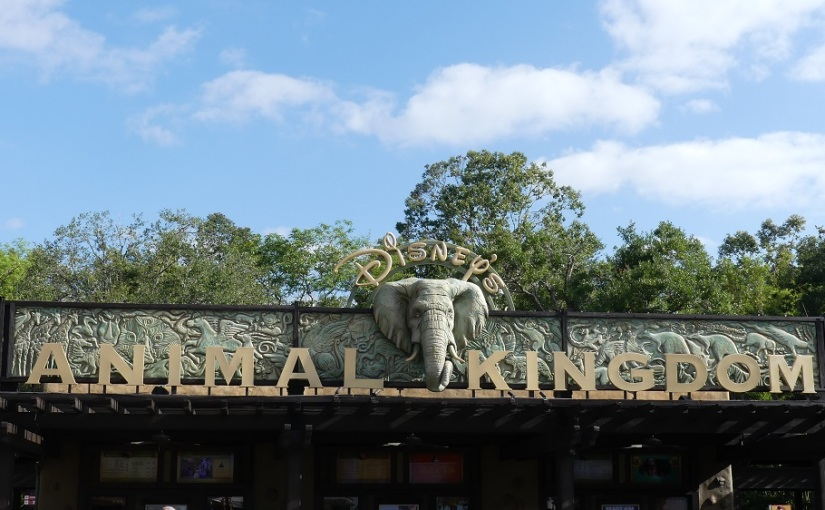 The Retirees in the South East USA – Animal Kingdom at Disney World